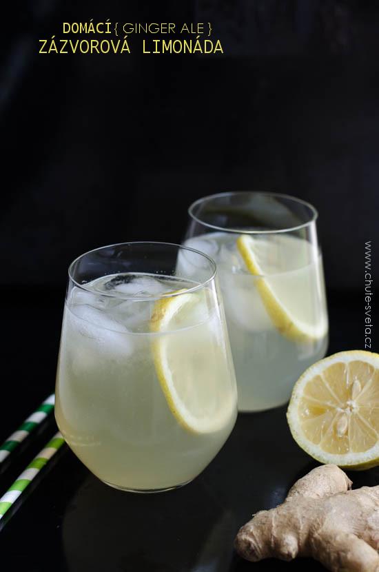 domácí zázvorová limonáda { ginger ale }